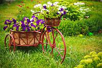 12 простых способов украсить сад