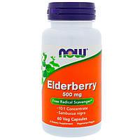 Екстракт бузини, Now Foods, 500 мг, 60 капсул