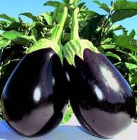 Семена баклажана Тиррения F1(1000c)