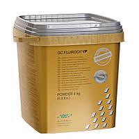 FUJIROCK EP Premium, cупергипс IV класса 4 кг, Титановый Серый
