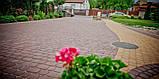 Тротуарная плитка «Носталит», коричневый, 60 мм, заводское качество, фото 5