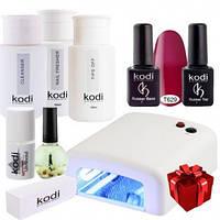 Стартовый набор гель-лаков Kodi + УФ лампа 36Вт «Легкий старт» (7)