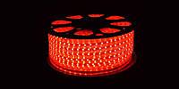 LED 5050 Red Красная 100m 220V