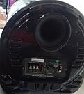 Авто сабвуфер Ailiang AL-1000A, фото 2