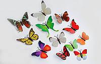 Об'ємні 3D метелики на стіну (шпалери) для декору (різнокольорові)
