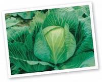 Семена капусты Бригадир F1 (10 000c) средне-поздняя