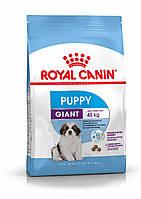Сухой корм Royal Canin (Роял Канин) Giant Puppy для щенков собак пород крупных размеров, 1 кг