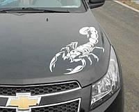 Дизайнерская наклейка на авто Белый Скорпион
