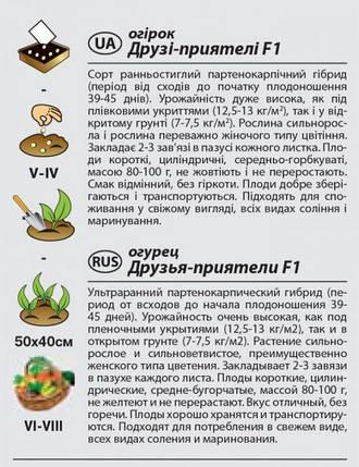 """Насіння огірка ультрараннего, самоопыляемого """"Друзі-приятелі"""" F1 (0,25 г) від Agromaksi seeds, фото 2"""