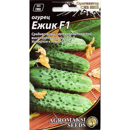 """Семена огурца самоопыляемого, раннего """"Ежик"""" F1 (0,25 г) от Agromaksi seeds, фото 2"""