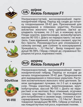 """Семена огурца ультрараннего, самоопыляемого """"Князь Голицин"""" F1 (0,25 г) от Agromaksi seeds, фото 2"""