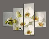 Модульная картина Белые орхидеи Код: 561.4к.120, фото 2