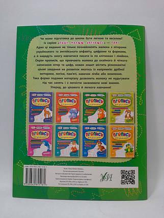 УЛА Пишу Малюю Навчаюсь Білочка Прописи для дошкільнят, фото 2