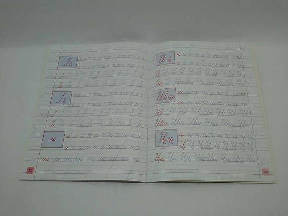 УЛА Пишу Малюю Навчаюсь Тигреня Прописи для дошкільнят, фото 2