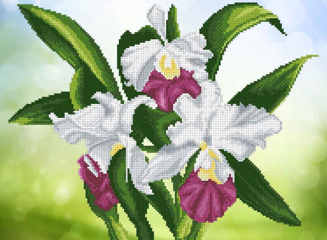 Схема для вышивания бисером Белые орхидеи БИС3-201 (А3)