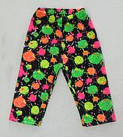 Детский трикотаж. Шорты- бриджи ( тресы). 80-92