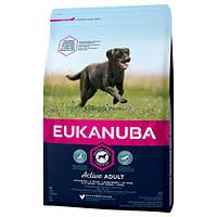 Корм для собак EUKANUBA Adult Large Breed 15 кг для крупных пород с курицей