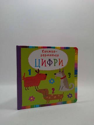 БАО Книжка гармонька УКР Цифри, фото 2