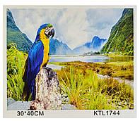 Картина по номерам Природа: попугай, рисование по номерам, 40х30см