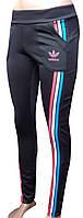 Спортивный штаны женские