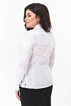 Женская блузка белого цвета  большой размер 50-58, фото 2