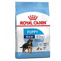 Корм для собак (Роял Канин) ROYAL CANIN Maxi Puppy 15 кг - для щенков собак крупных пород