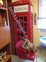 Шкаф в стиле английской телефонной будки