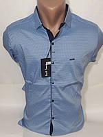 Рубашка  мужская Paul Smith vd-0025 голубая приталенная в принт стрейч коттон Турция трансформер