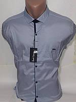 Рубашка  мужская Paul Smith vd-0027 голубая приталенная в принт стрейч коттон Турция трансформер