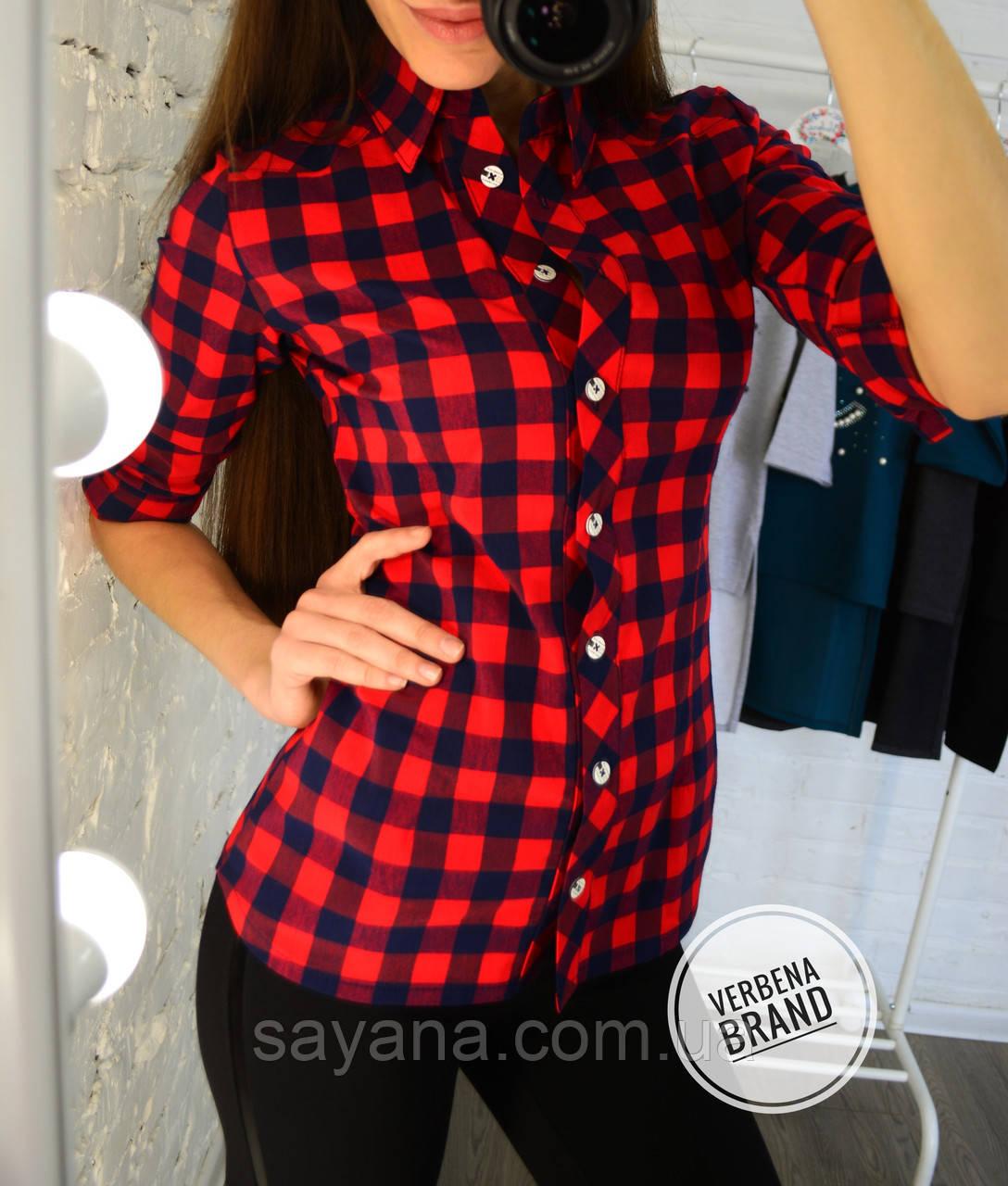 eb3b843b0a82405 Женская рубашка с принтом- горошек в расцветках, р-р 48-54. ВЕ-5-1-0219
