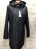 Женская куртка весна/осень  48 50 52 54 56