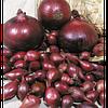 Семена лука Рэд Барон F1 (250 000с) красный средне-ранний
