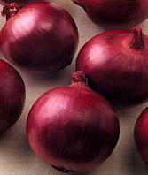 Семена лука Рэд Цеппелин F1(10000c) красный средний, фото 1