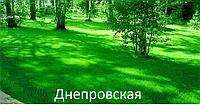 Семена газонной травы  Универсальная 1кг.