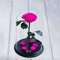 Стабилизированная роза в колбе Lerosh - Premium плюс 33 см, Ярко Розовая