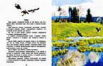 Рассказы о природе для детей. Коваль, Скребицкий, Соколов-Микитов, фото 3