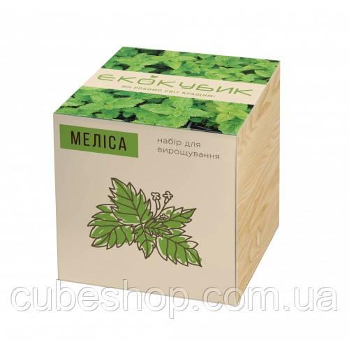 """Экокуб для выращивания растений """"Мелисса"""""""