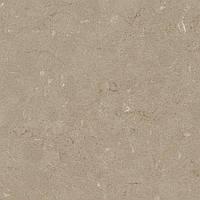 Искусственный камень, Кварц Silestone Coral Clay 20 мм, фото 1