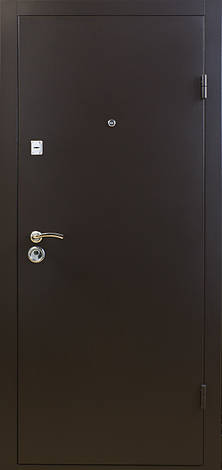 Двери металлические, гнутый профиль, коробка 90 мм, порошковая покраска, фото 2