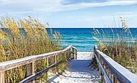 Фотообои готовые Дорога на пляж размер 368 х 254 см