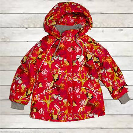 Термо куртка демисезонная для девочки от 1,5 до 5 лет красная, фото 2