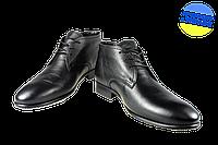 Мужские ботинки кожанные на меху и на молнии alexandro 14860 черные   зимние