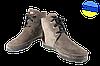 Женские ботильоны замшевые на шнуровке mafia 3625/24-12 коричневые   зимние