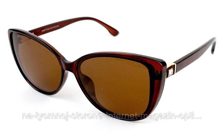 Солнцезащитные очки Dario 320387-FY02, фото 2
