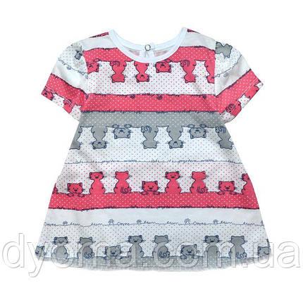 """Дитяче літнє плаття """"Котики"""" для дівчаток, фото 2"""