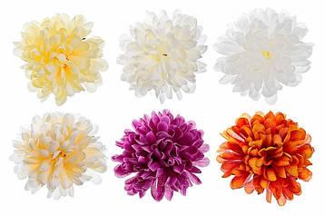 Цветочные головки