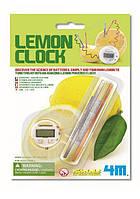Научные игры часы из лимона