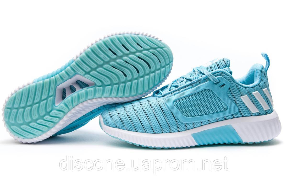 Кроссовки женские 12902 ► Adidas Climacool, голубые ✅Скидка 36% ► [ 38 ]