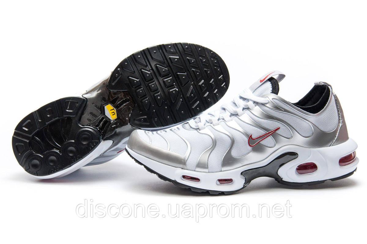 Кроссовки мужские 12974 ► Nike Air Tn, серебряные ✅Скидка 32% ► [ 43 ]