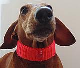 Вязанный ошейник для собаки или кота, фото 8